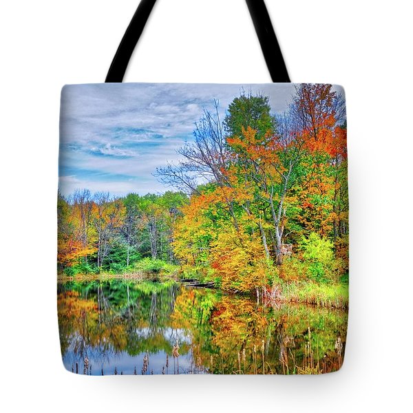 Tote Bag featuring the photograph Dreams Of Fall In The Finger Lakes by Lynn Bauer