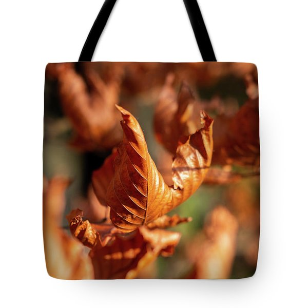 Tote Bag featuring the photograph Dried Autumn Leaves by Scott Lyons