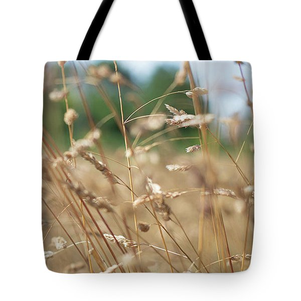 Tote Bag featuring the photograph Dried Grass Out Of Focus by Scott Lyons