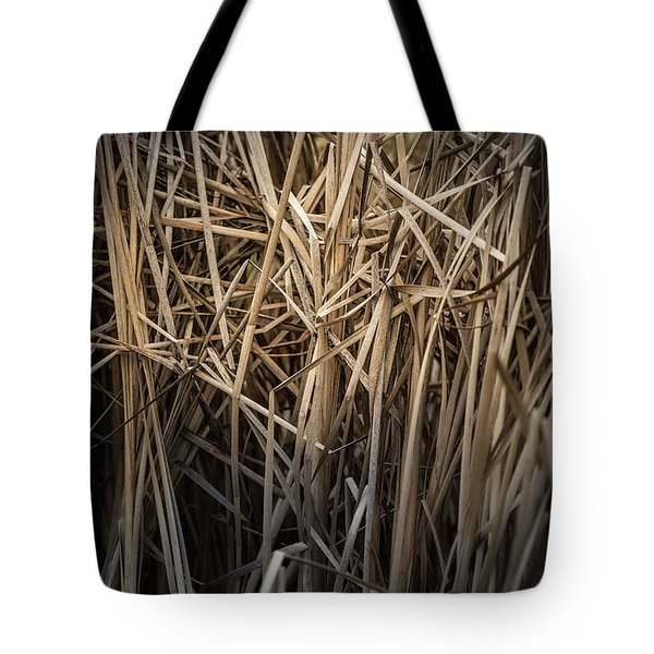 Dried Wild Grass II Tote Bag