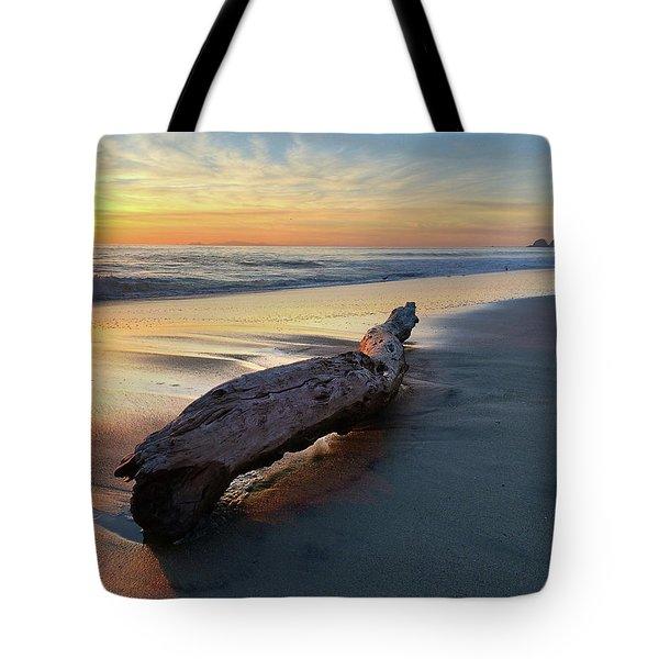 Drift Wood At Sunset II Tote Bag