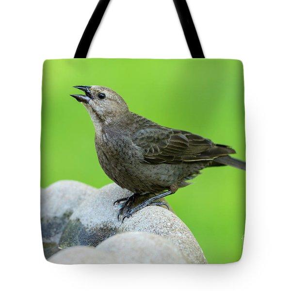Drink It Up Female Cowbird Tote Bag