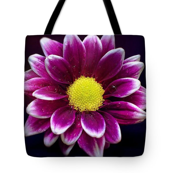 Droplets On A Daisy Tote Bag