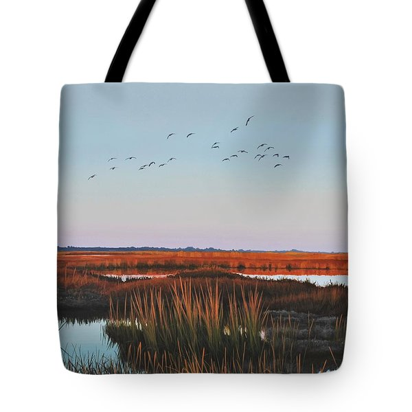 Dropping In - Teal Tote Bag