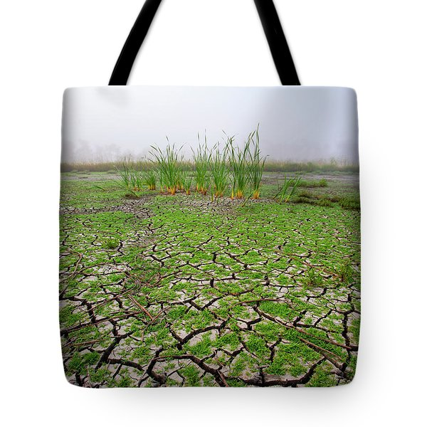 Dry Duck Pond Tote Bag