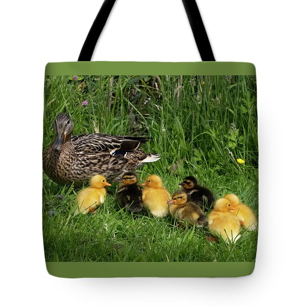 Duck And Cute Little Ducklings Tote Bag