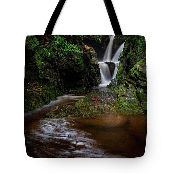Duggers Creek Falls - Blue Ridge Parkway - North Carolina Tote Bag