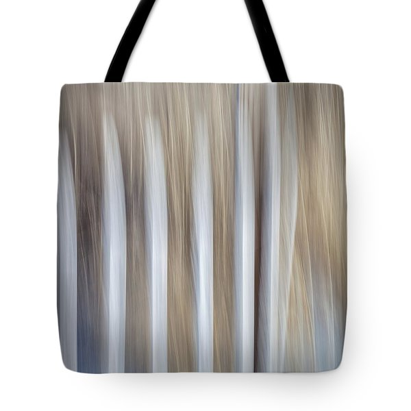 Dune Fence Tote Bag