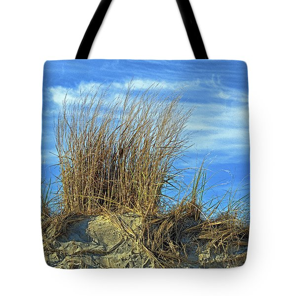 Tote Bag featuring the photograph Dune Grass In The Sky by Bill Swartwout Fine Art Photography