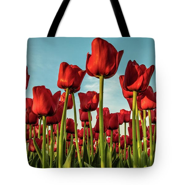 Tote Bag featuring the photograph Dutch Red Tulip Field. by Anjo Ten Kate