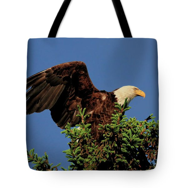 Eagle In Treetop Tote Bag