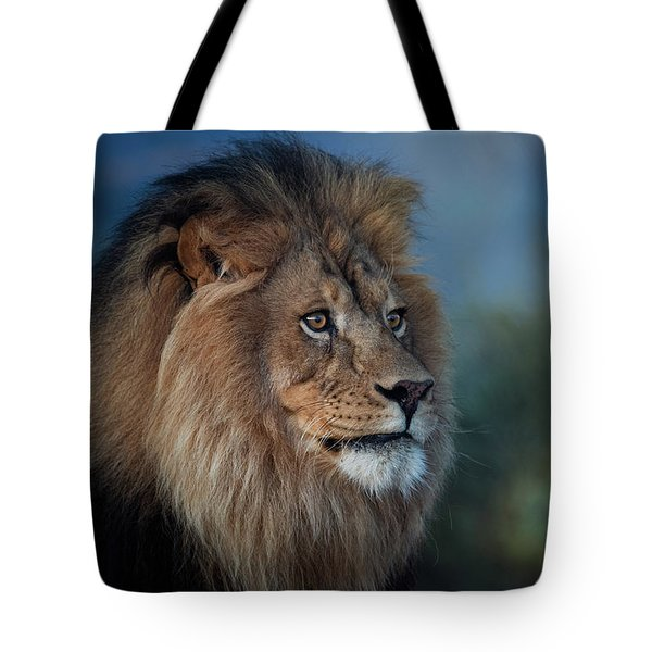 Early Morning Lion Portrait Tote Bag