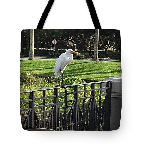 Egret Posing Tote Bag