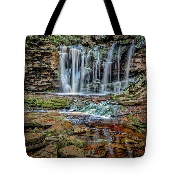 Elakala Falls 1020 Tote Bag