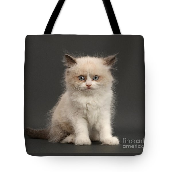 Tote Bag featuring the photograph Electric Kitten by Warren Photographic