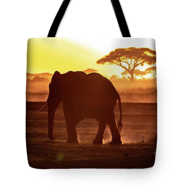 Elephant Walking Through Amboseli At Sunset Tote Bag