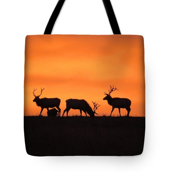 Elk In The Morning Light Tote Bag