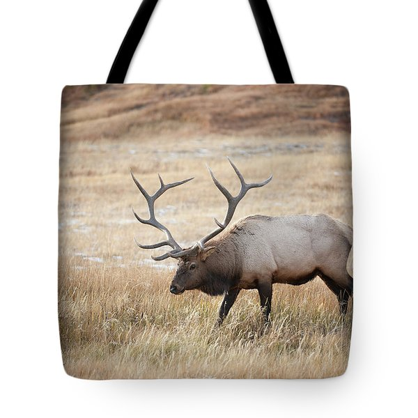 Elk In Yellowstone National Park Tote Bag