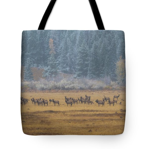Elk On A Snowy Autumn Day Tote Bag
