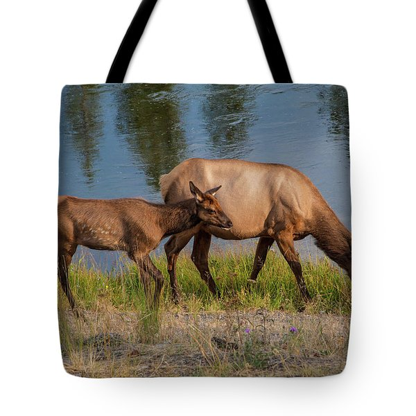 Tote Bag featuring the photograph  Elks Grazing On The Madison River, Wy by Lon Dittrick