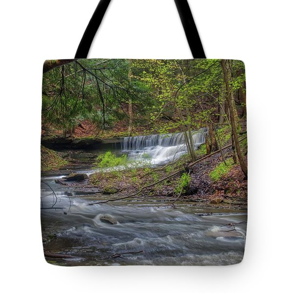 Emery Park Tote Bag