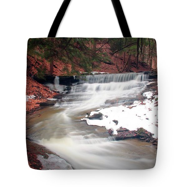 Emery Park South Wales Ny Tote Bag