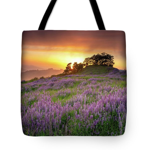 Tote Bag featuring the photograph End Of Day by Jason Roberts