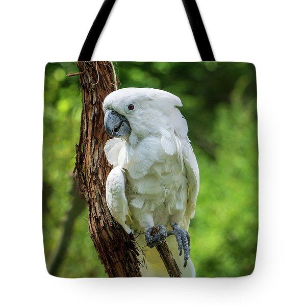 Endangered White Cockatoo Tote Bag