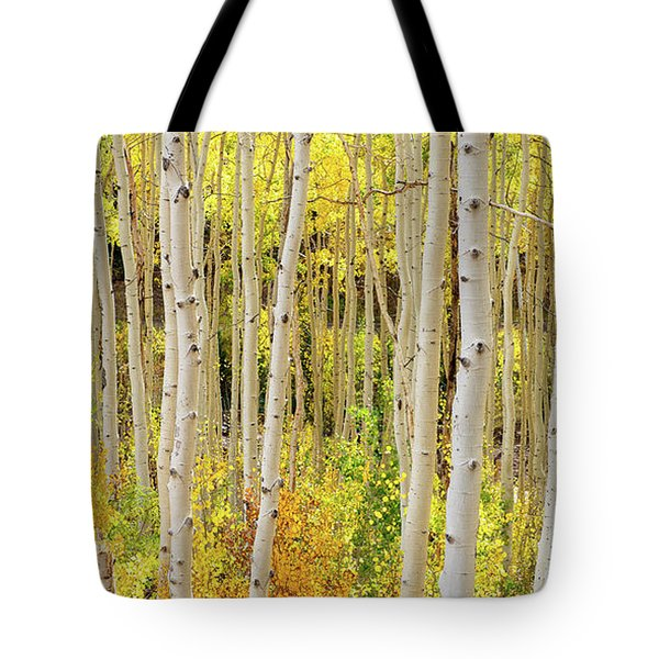 Endless Aspens 2x1 Tote Bag
