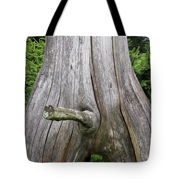 Erection - Bizarrely Shaped Tree Branch Looking Like A Phallus Tote Bag