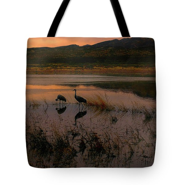 Evening Duet Tote Bag