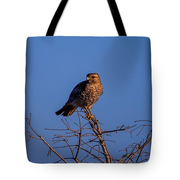 Evening Look Out Tote Bag