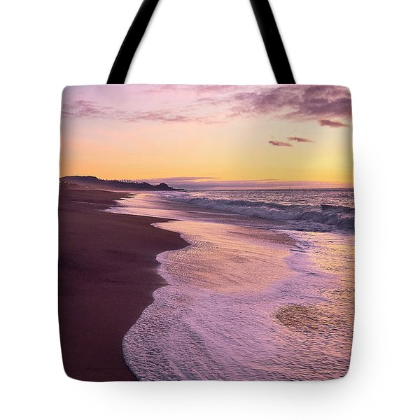 Tote Bag featuring the photograph Evening On Gleneden Beach by Whitney Goodey