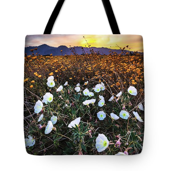 Tote Bag featuring the photograph Evening With Primroses by Jason Roberts