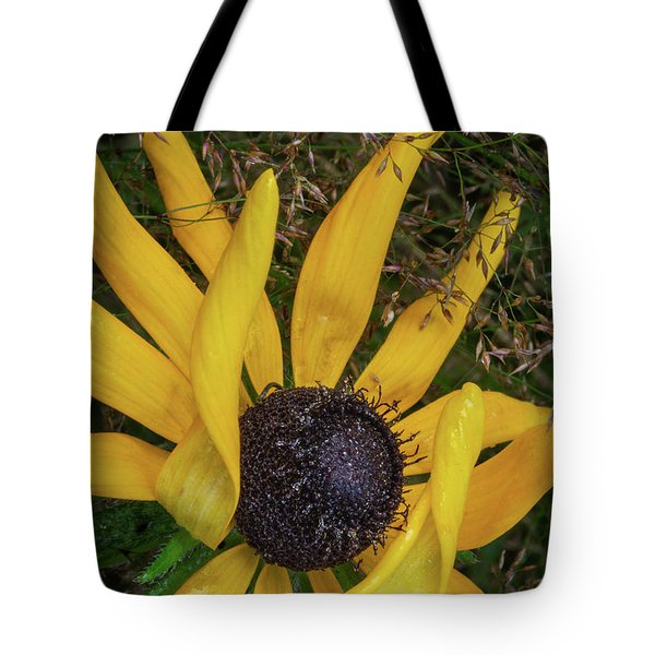Tote Bag featuring the photograph Extraordinary by Dale Kincaid