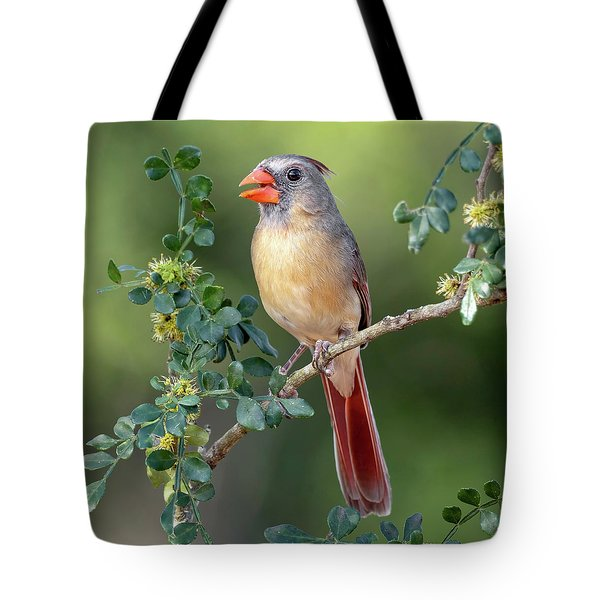 Fabulous Female Cardinal Tote Bag