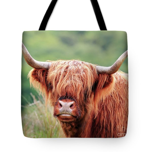 Face-to-face With A Highland Cow Tote Bag