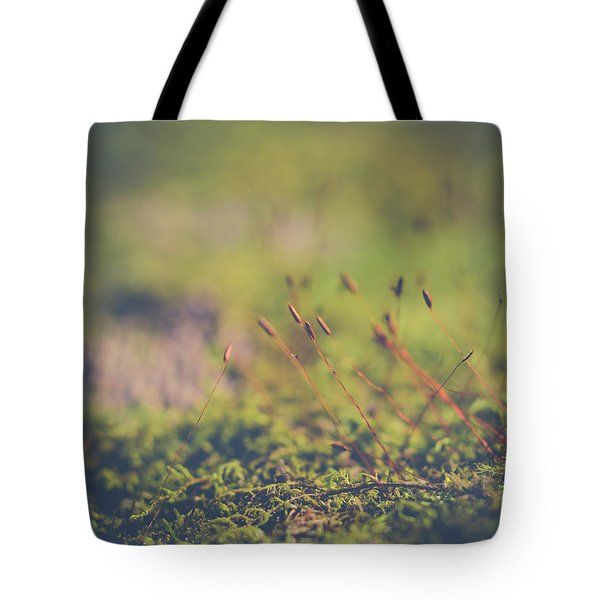 Fairy Hunt Tote Bag