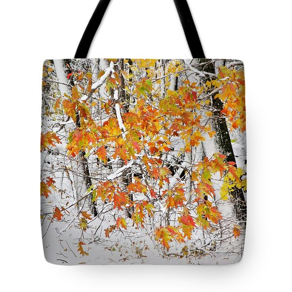 Fall And Snow Tote Bag