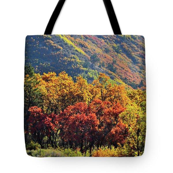 Fall Colors Along Avalanche Creek Road Tote Bag