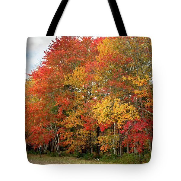 Tote Bag featuring the photograph Fall Colors by Doug Camara