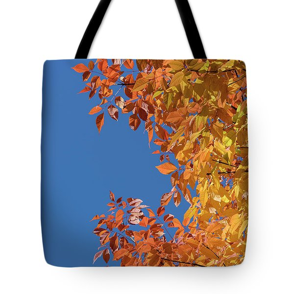 Tote Bag featuring the photograph Fall Colors by Steven Sparks