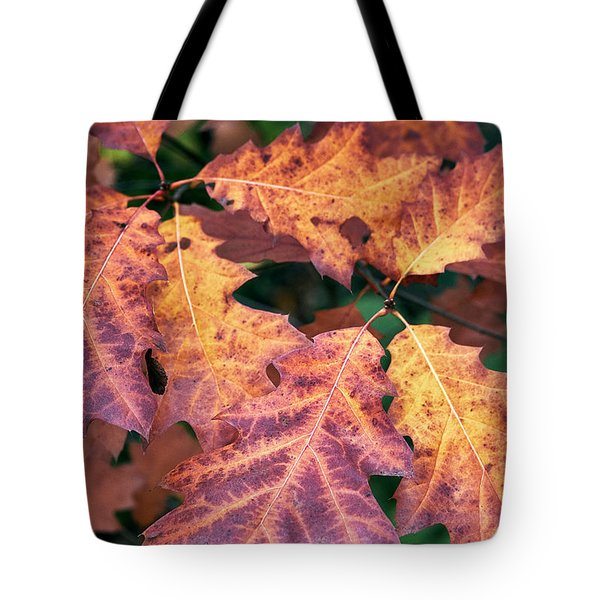 Tote Bag featuring the photograph Fall Flames by Whitney Goodey