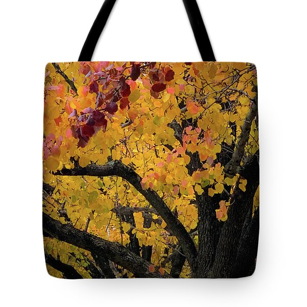 Fall In Carlyle Tote Bag