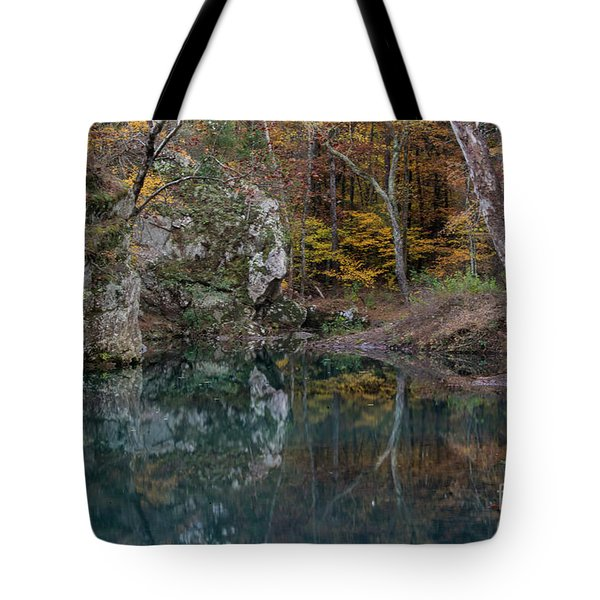 Tote Bag featuring the photograph Fall In The Ozarks by Joe Sparks