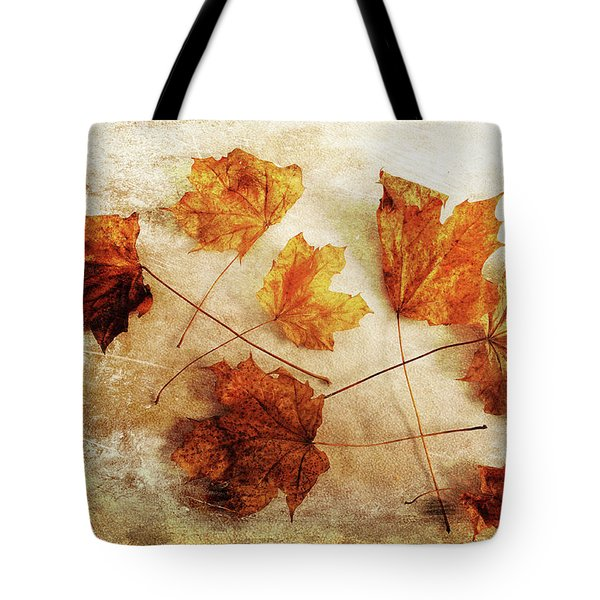 Tote Bag featuring the photograph Fall Keepers by Randi Grace Nilsberg