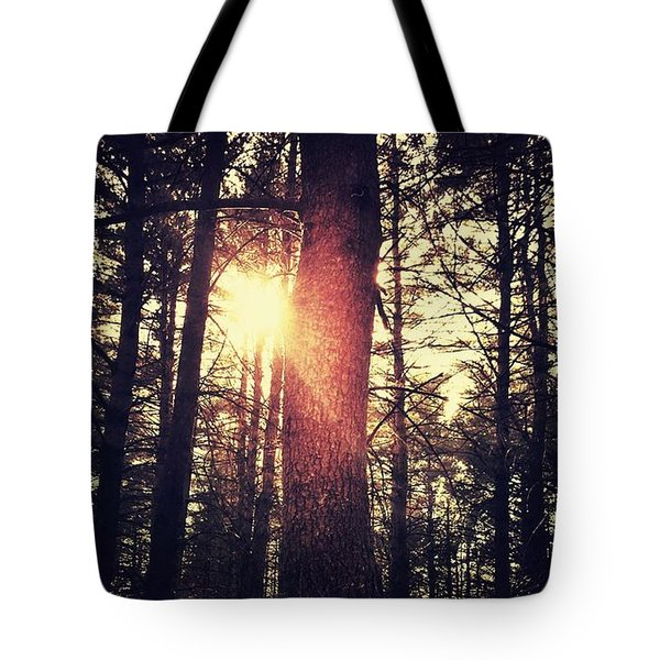 Fall Of Light Tote Bag