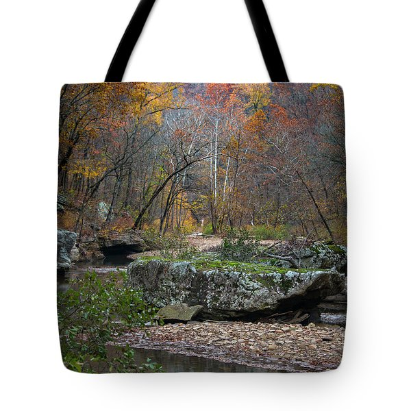 Tote Bag featuring the photograph Fall On The Kings River by Joe Sparks