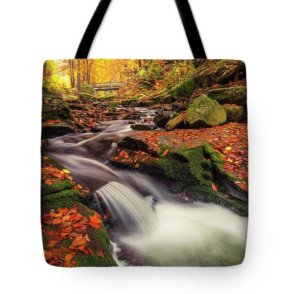 Fall Power Tote Bag