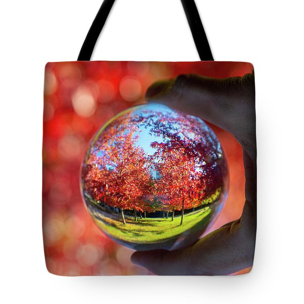 Tote Bag featuring the photograph Fall by Ross G Strachan